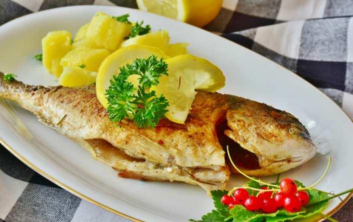 toxoplasmosi alimenti