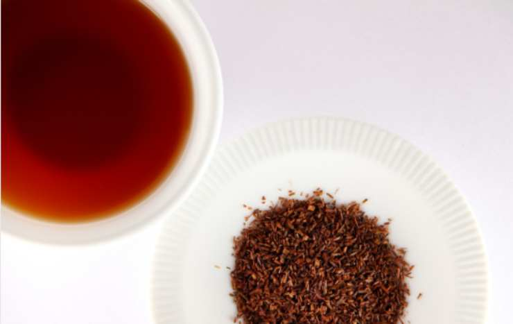 Rooibos, valido sostituto del tè in gravidanza