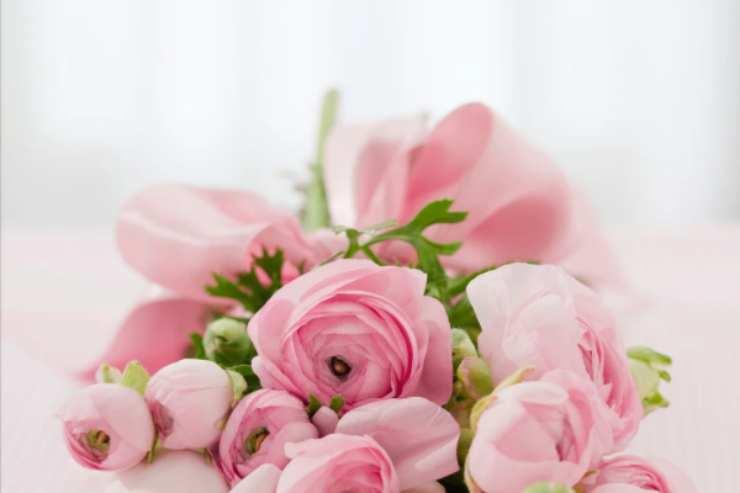 fiori che appassiscono subito