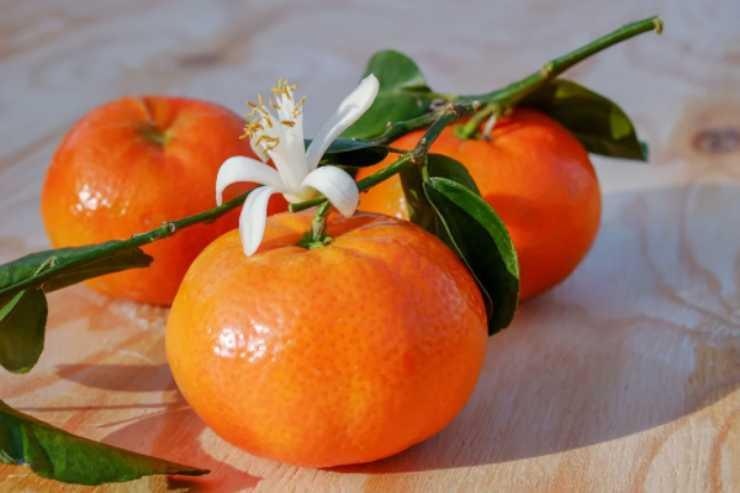 Gli incredibili usi del mandarino in campo beauty
