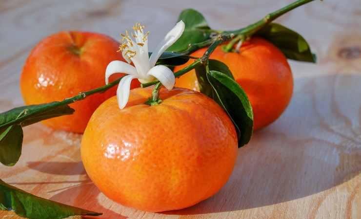 cellulite mandarino