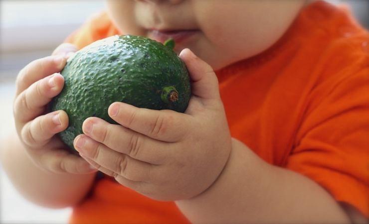 alimenti per il cervello dei bambini