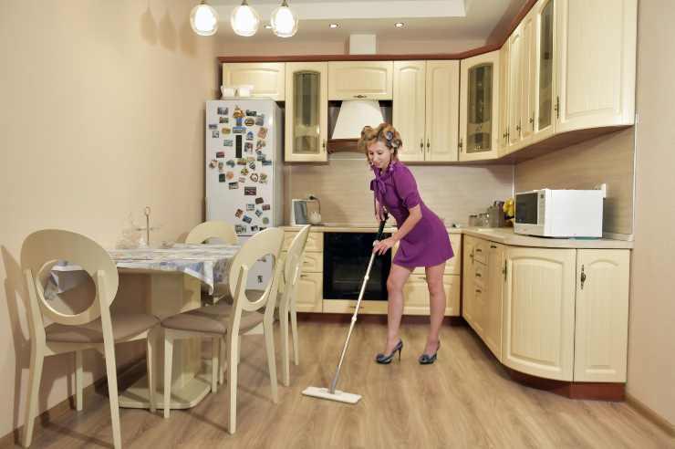 che tipo di casalinga sei