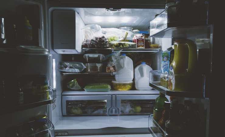 frigorifero puzza