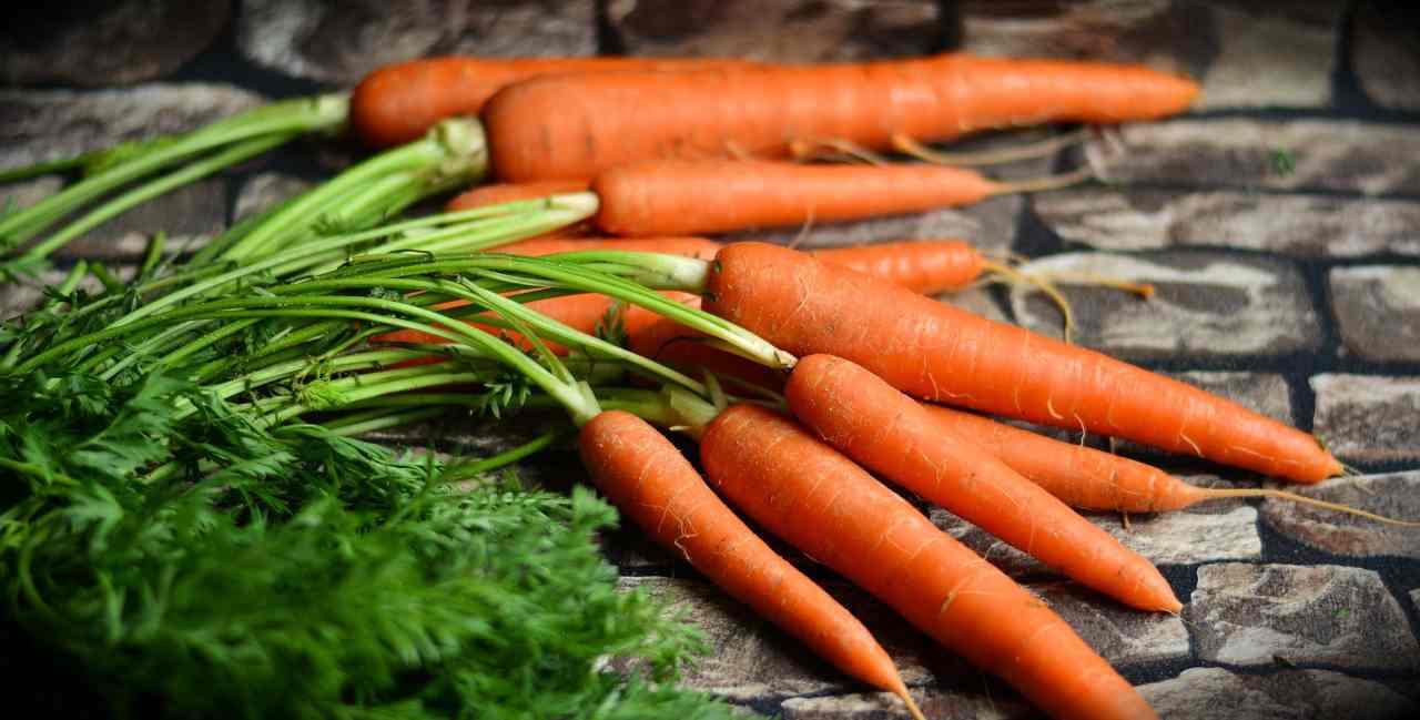 carote mariscono